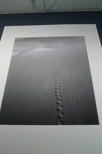 Eureka Dunes #7