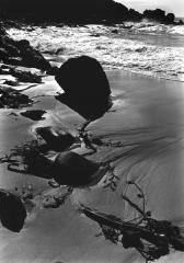Pfeiffer State Beach