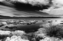 Shoreline, Mono Lake