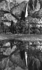 Yosemite Falls Refection