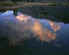 Pond, Bishop Pass Trail